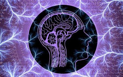 Parkinson – Naturheilkundlich behandeln