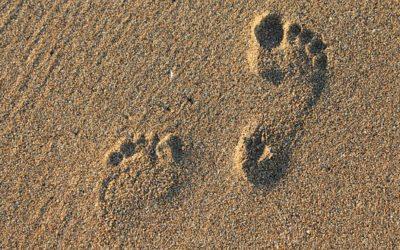 Fersensporn – Die große Erbse im Schuh