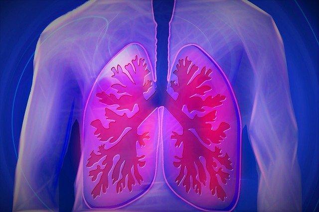 Gorlas Gesundheit - Lunge